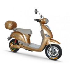 Электроскутер Eko-bike Gold 500 TLG