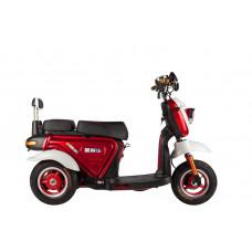 Трицикл S1 mini